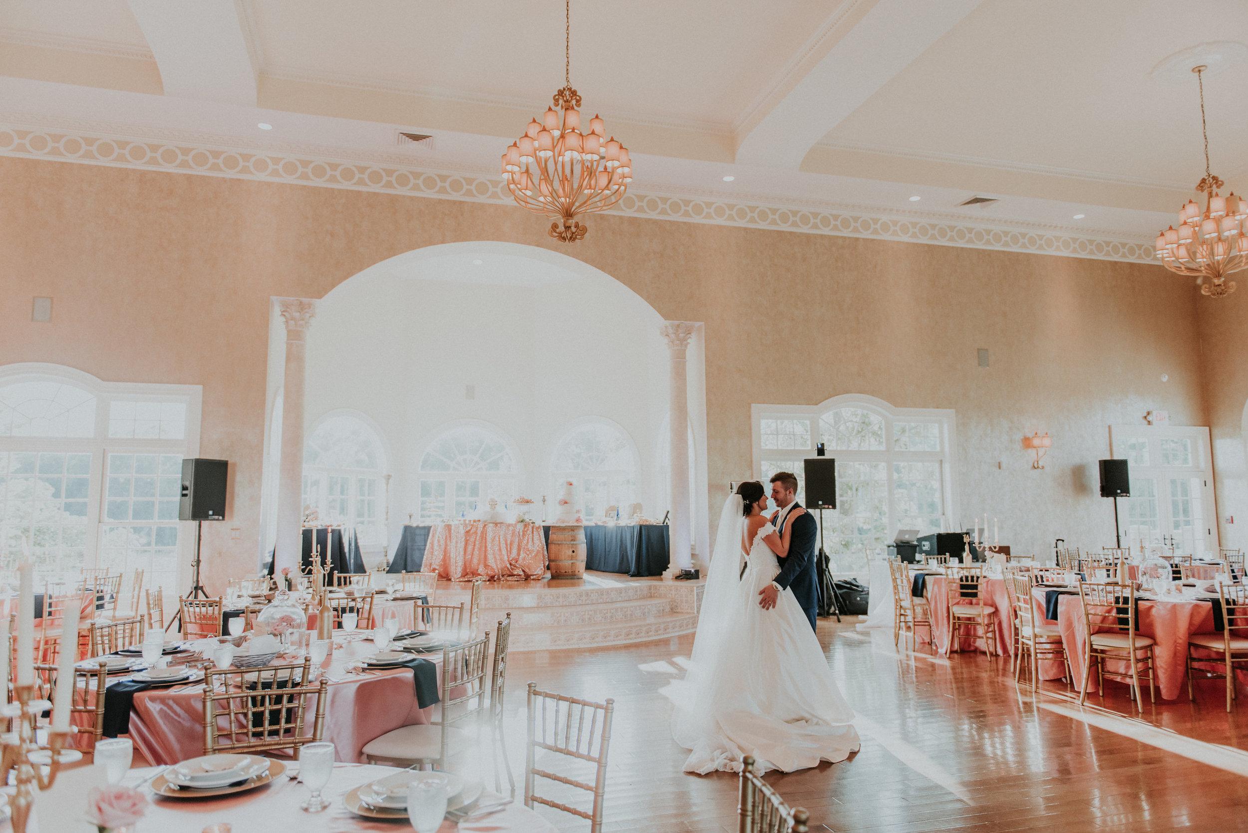 morais-wedding-virginia-wedding-planner-virginia-wedding-coordinator-leah-adkins-photography-beauty-and-the-beast