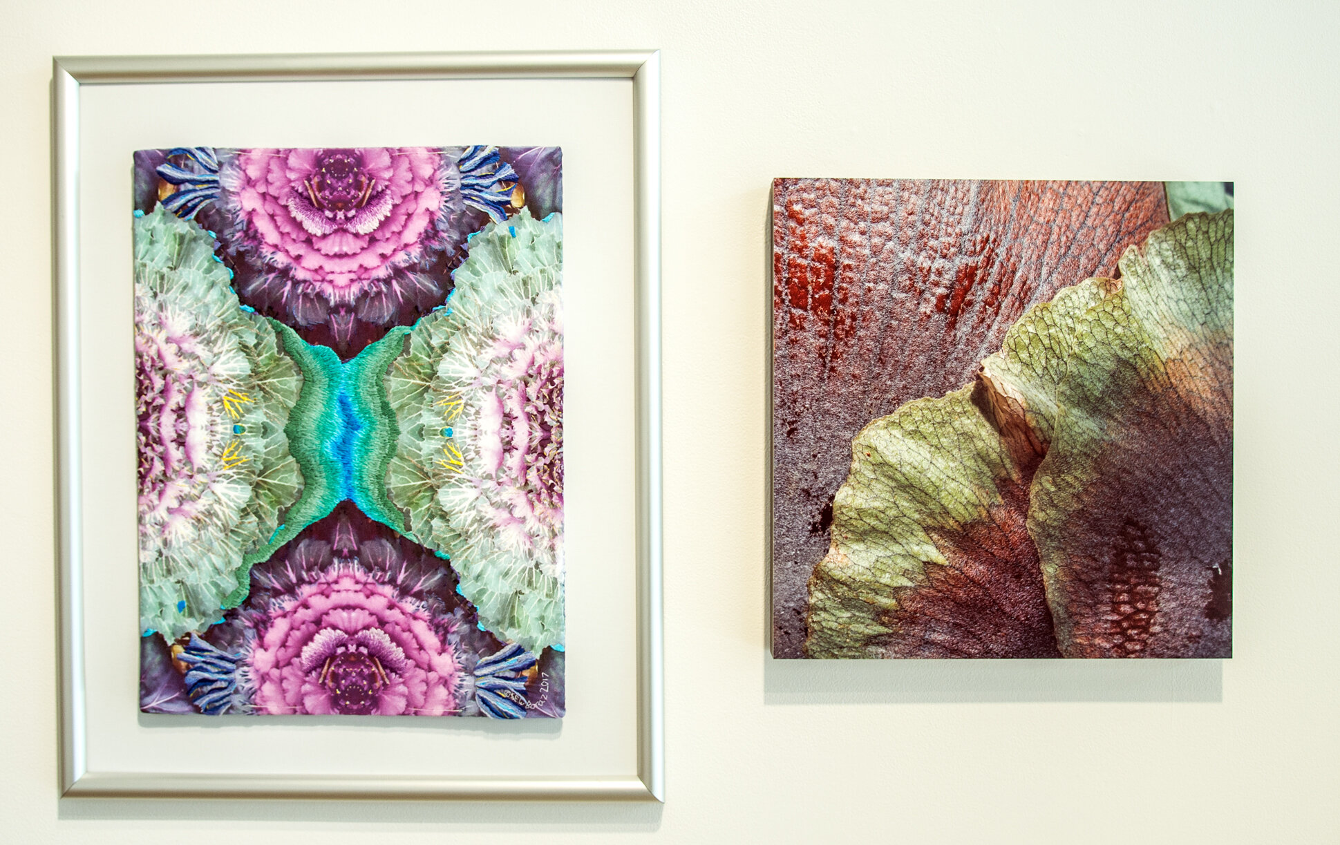 "Two images from ""Borders of Consciousness: Dreaming In Color"""