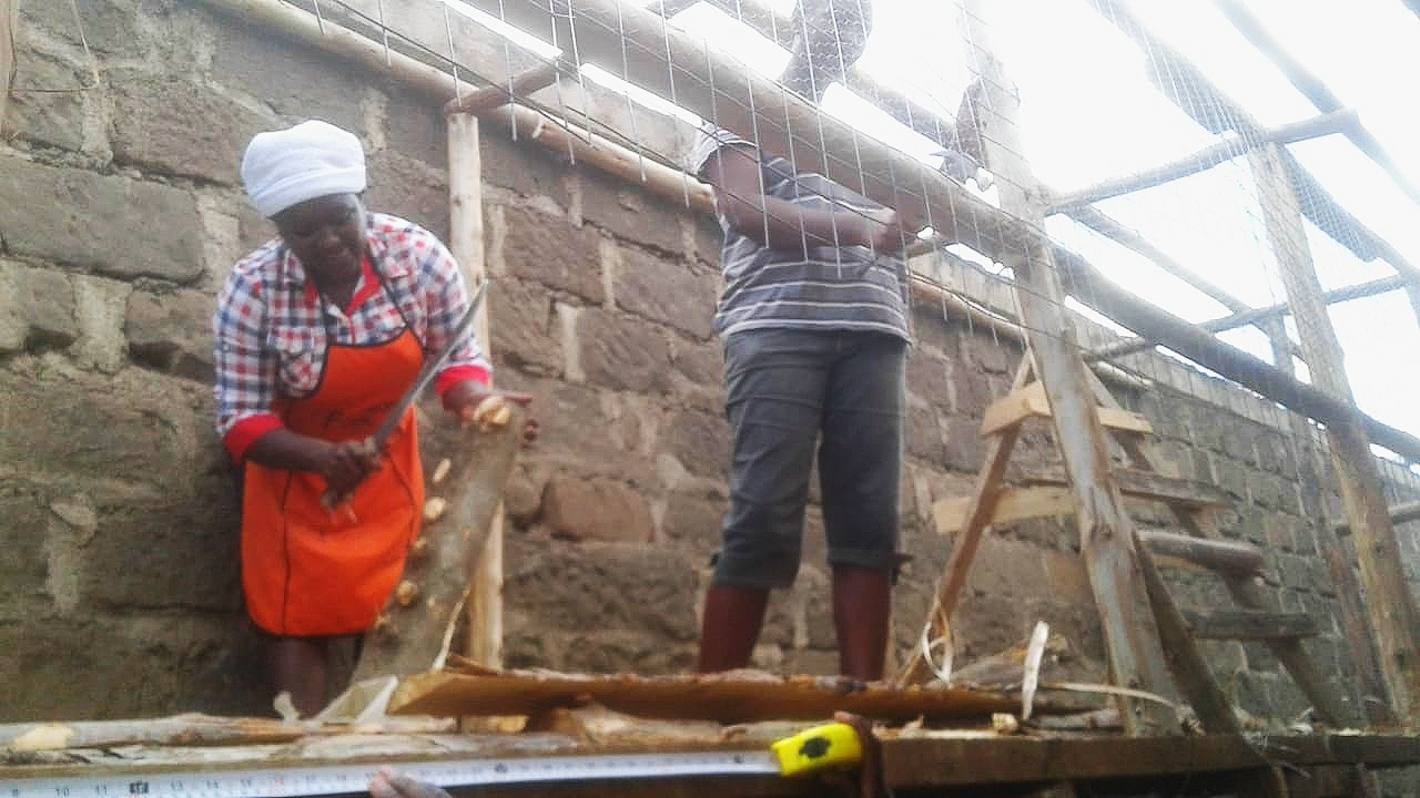 Building the chicken houses….