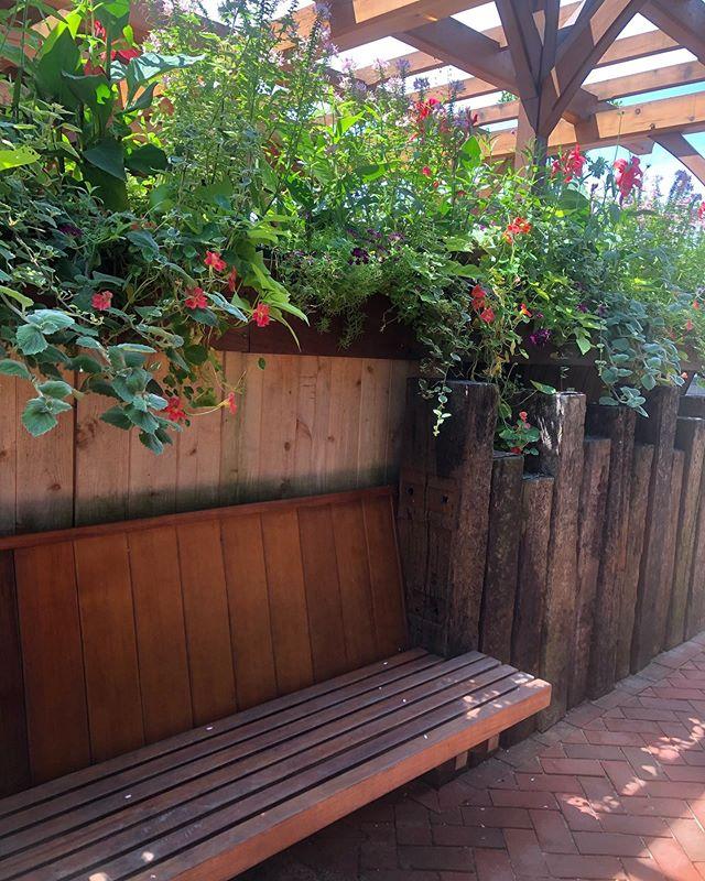 This patio oasis is 🔥. . . . . . . . . . . . . #newmanarchitecture  #visitnantucketisland  #jndesignbuild  #woodworking  #oasis  #garden  #designer  #pergola