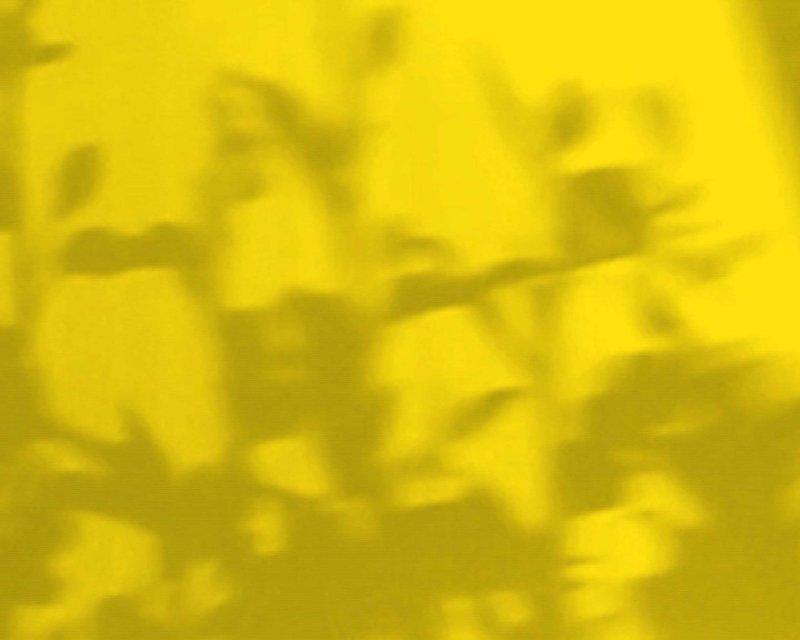 Anna Barriball, Daylight (still), 2013, video loop (Image courtesy of Frith Street Gallery)