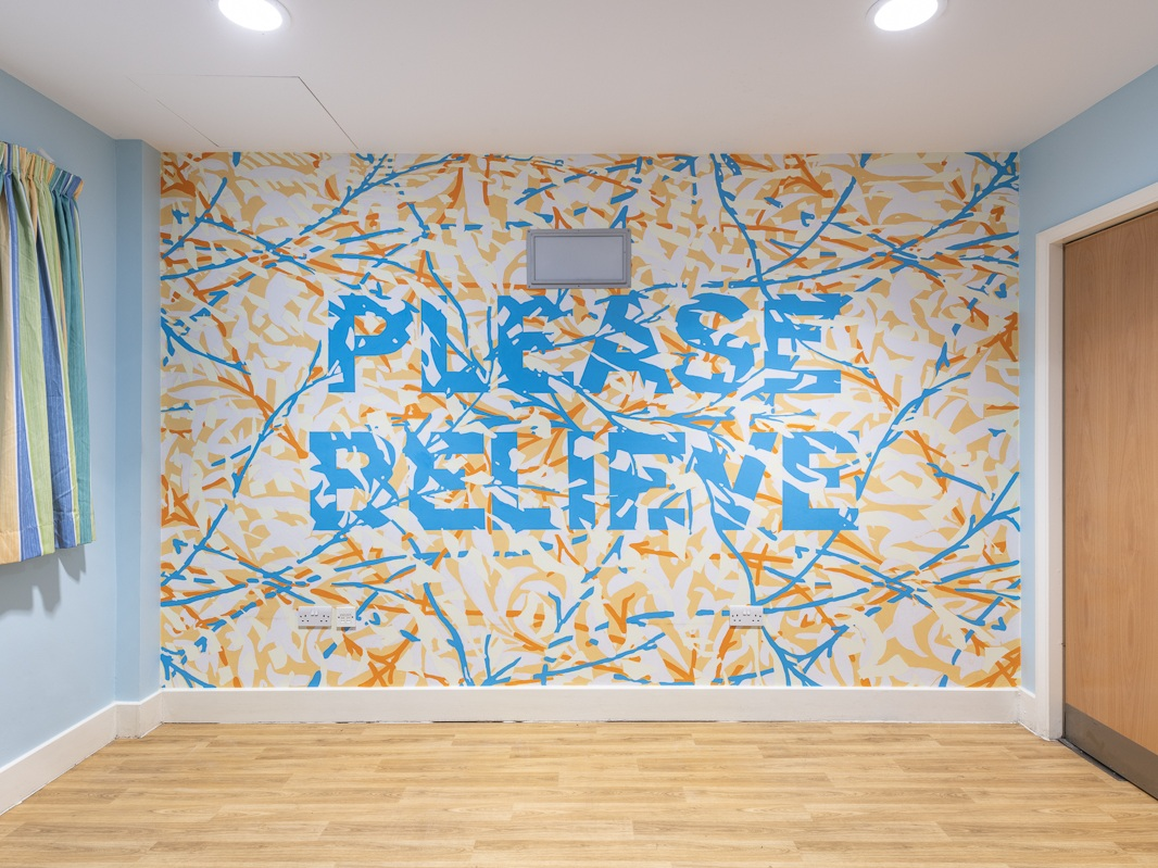 Mark Titchner - Communal Lounge, Bluebell Lodge, CNWL