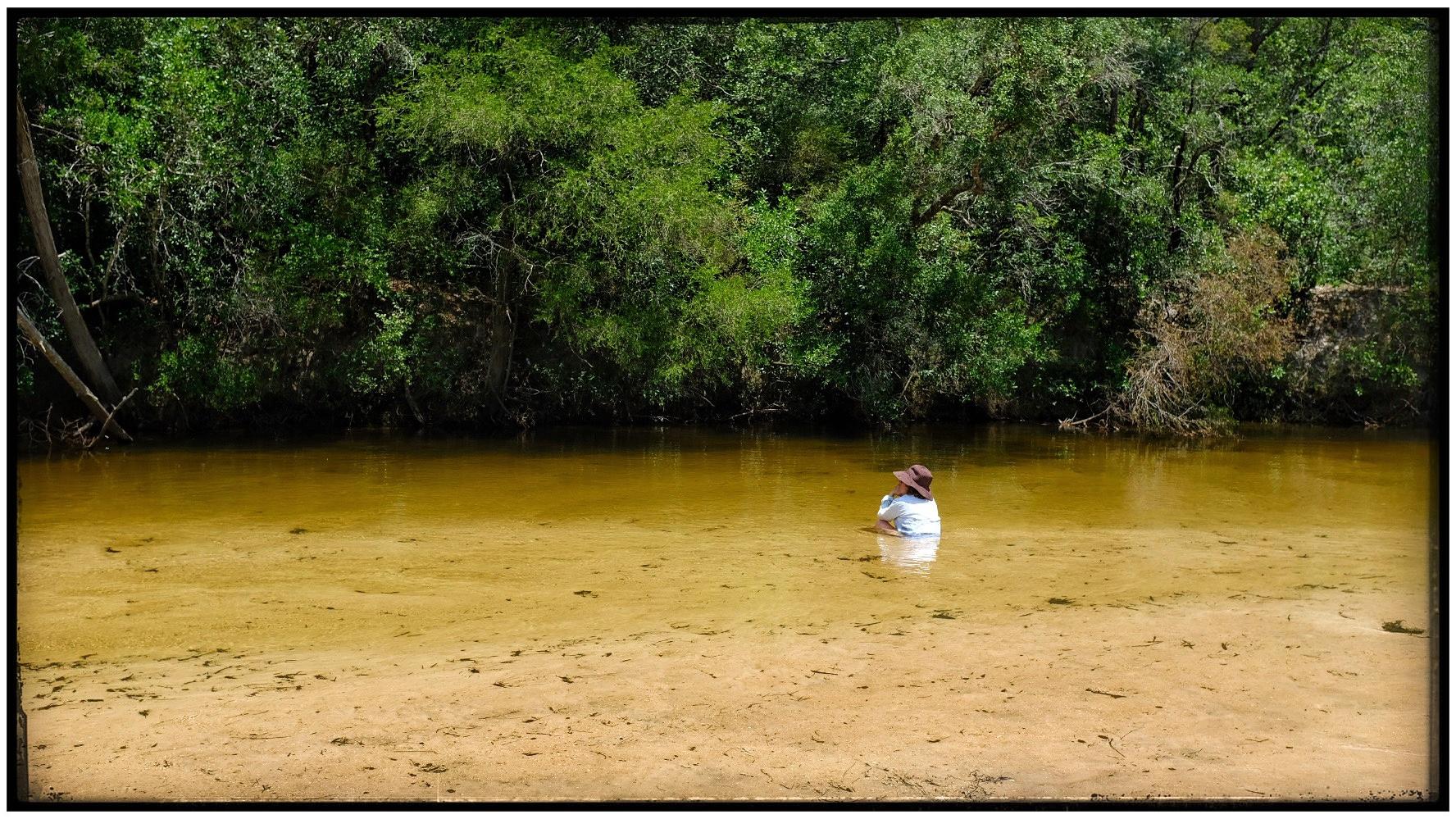 Coldwater creek in NWFlorida