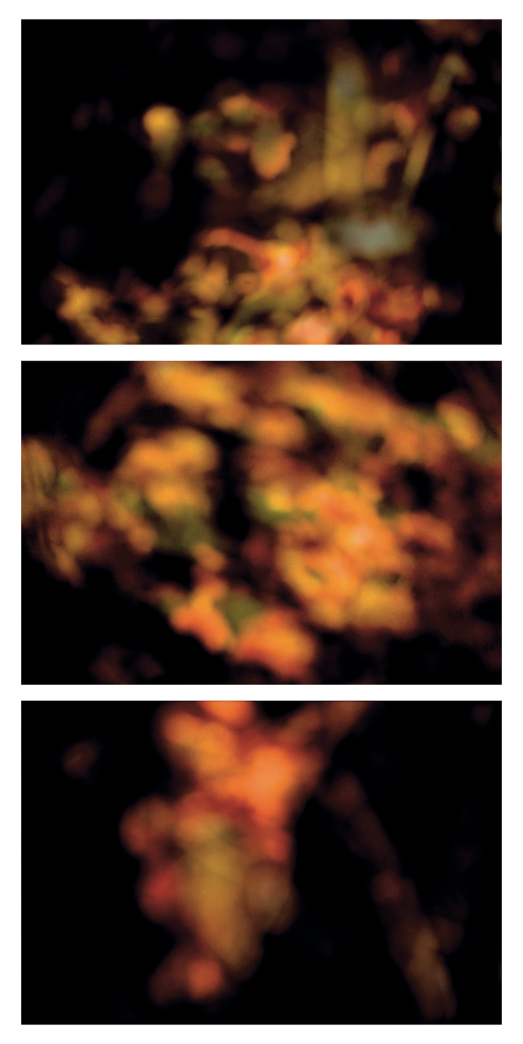 Coloma to Covert: Sandwich (triptych)