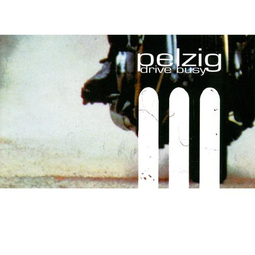 pelzig_drivebusy.jpg