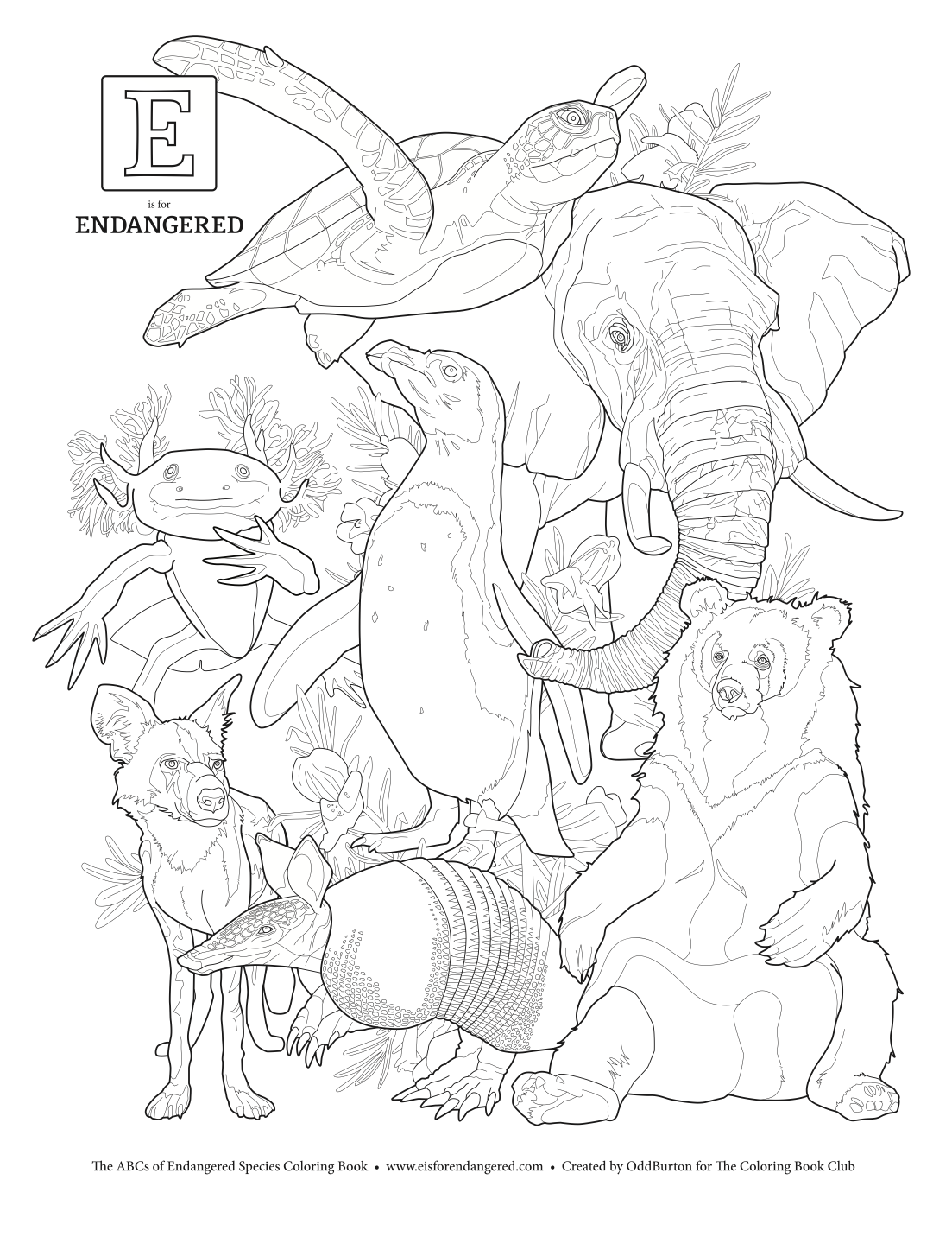 This FREE coloring page is ONLY available from the Coloring Book Club.