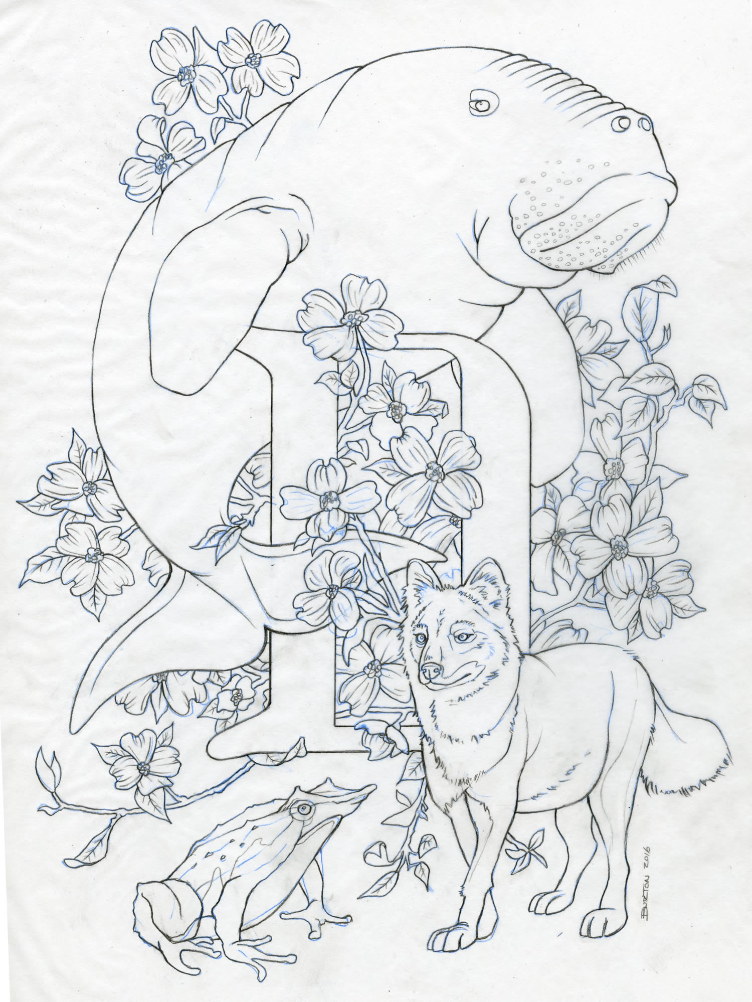 Letter D layout sketch