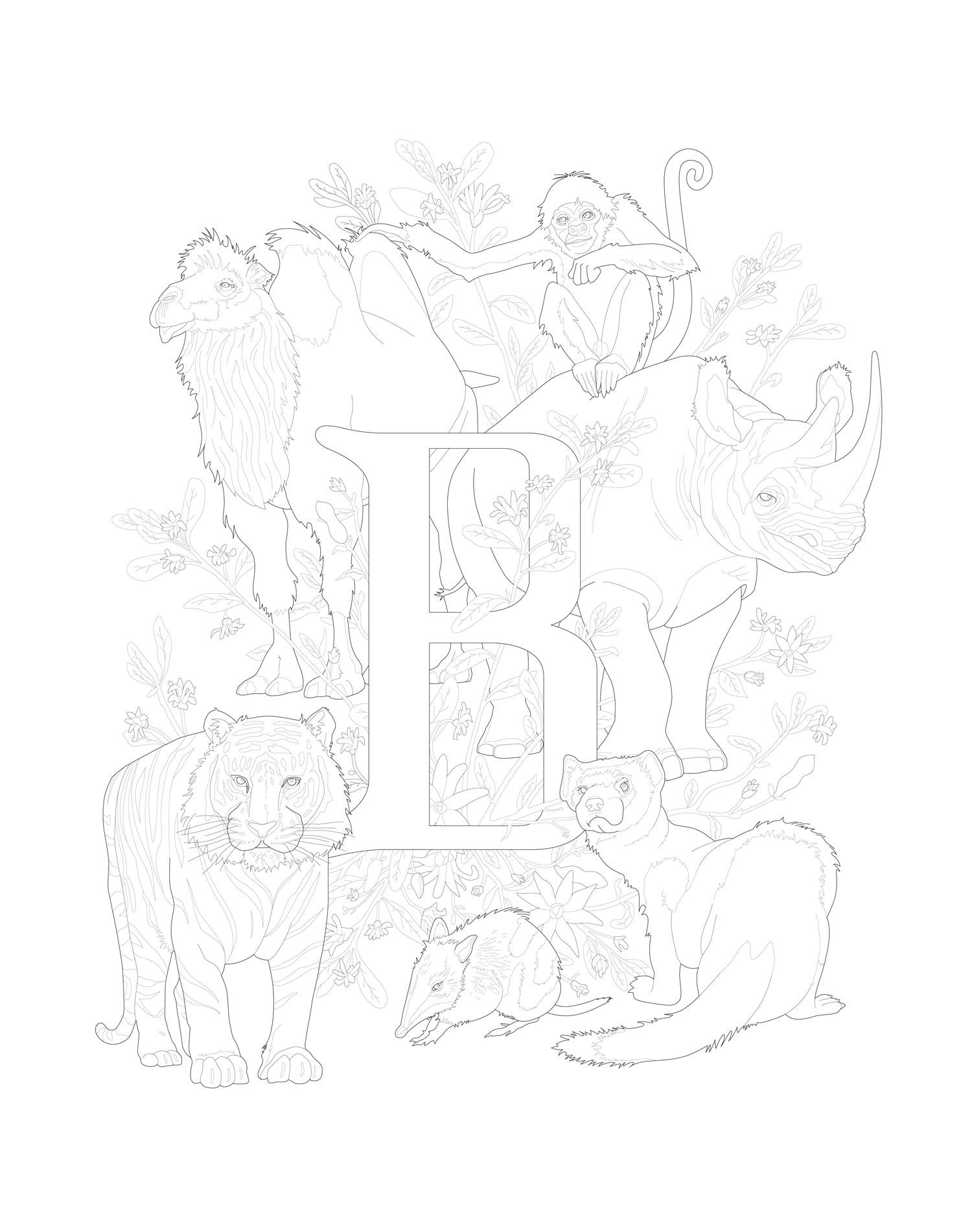 E is for Endangered, Letter B