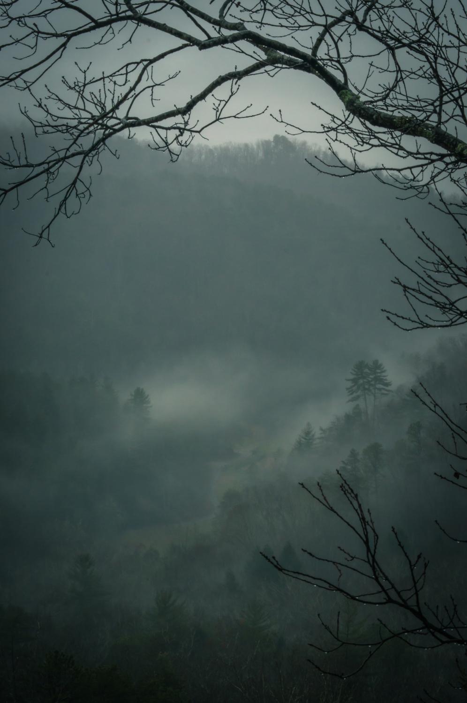 Two in the Mist - Smokey Mountains, TN