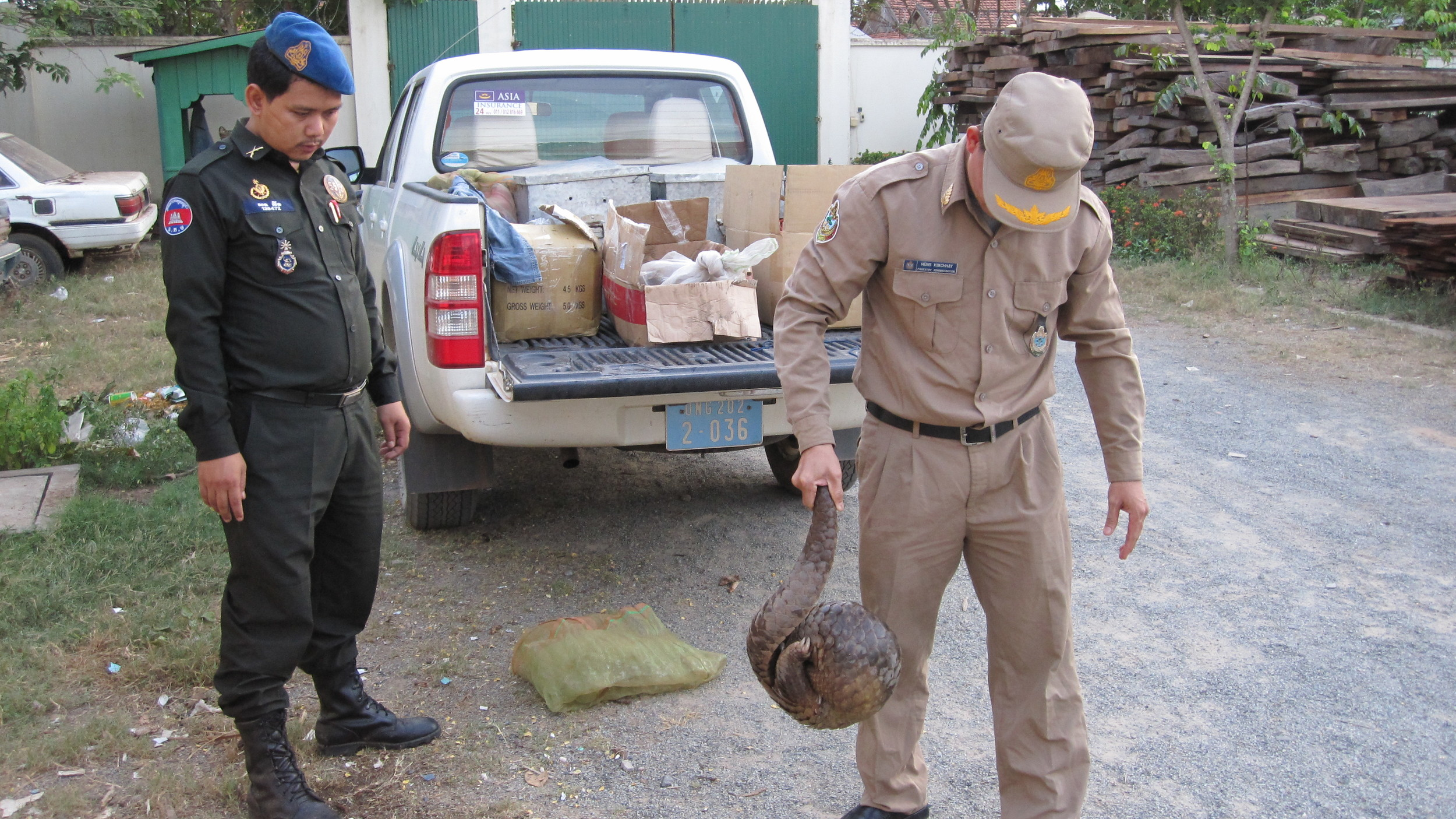 Wildlife rapid rescue team and a rescued pangolin Credit:  Wildlife Alliance