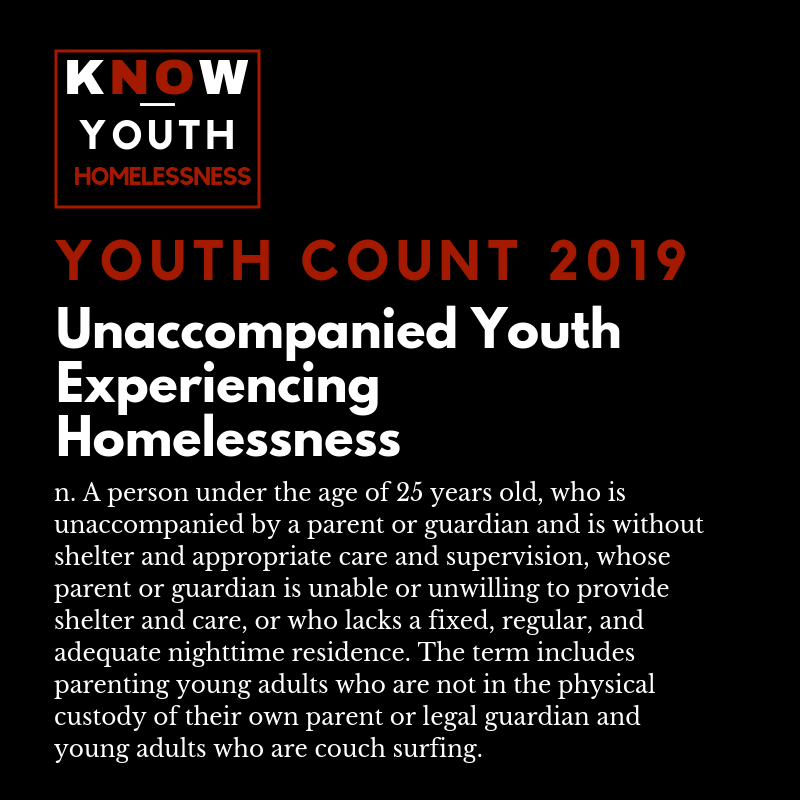 youth count 2019, general image 4.png
