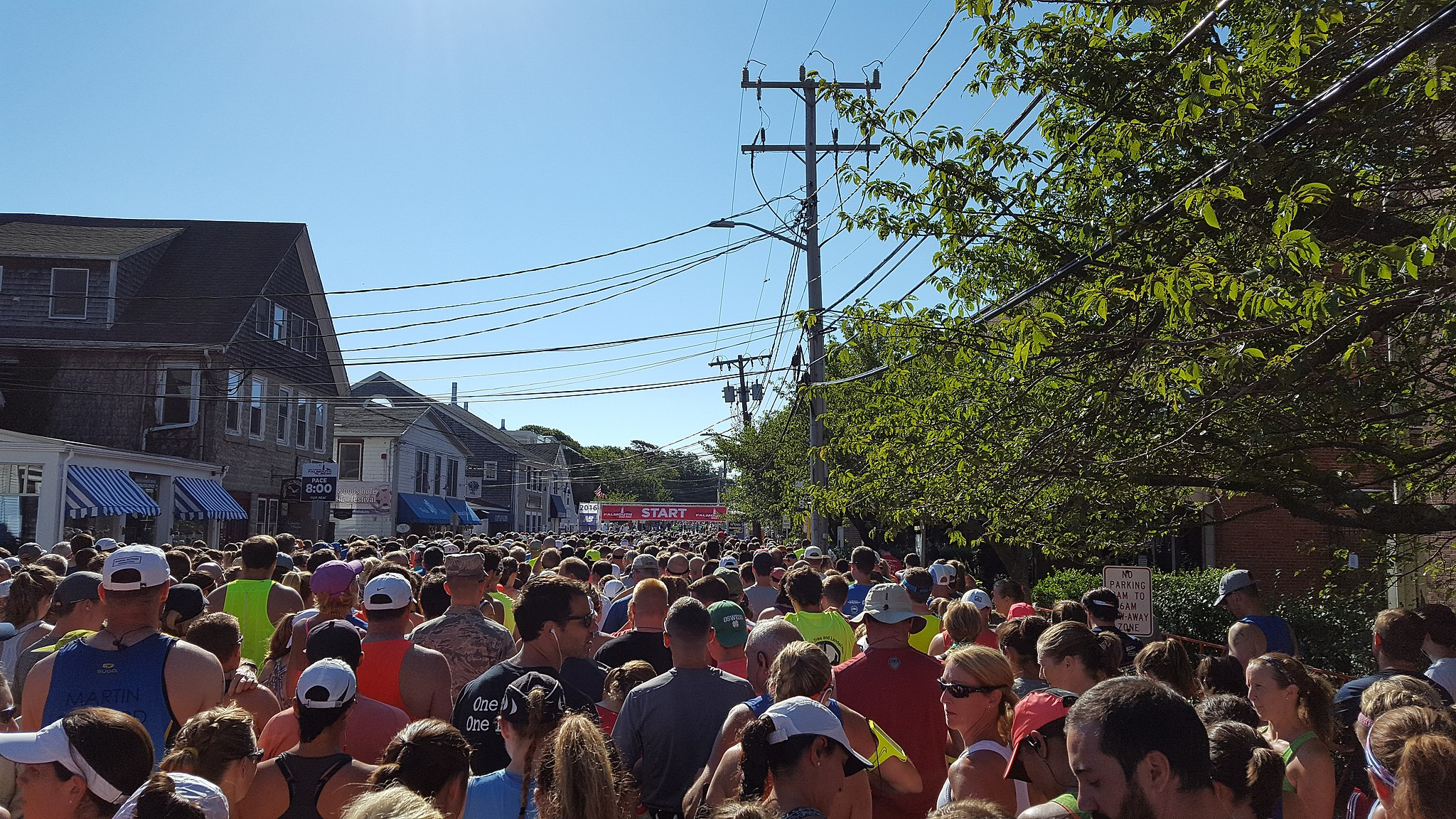 The starting line of the 2016 Falmouth Road Race - what a beautiful day!