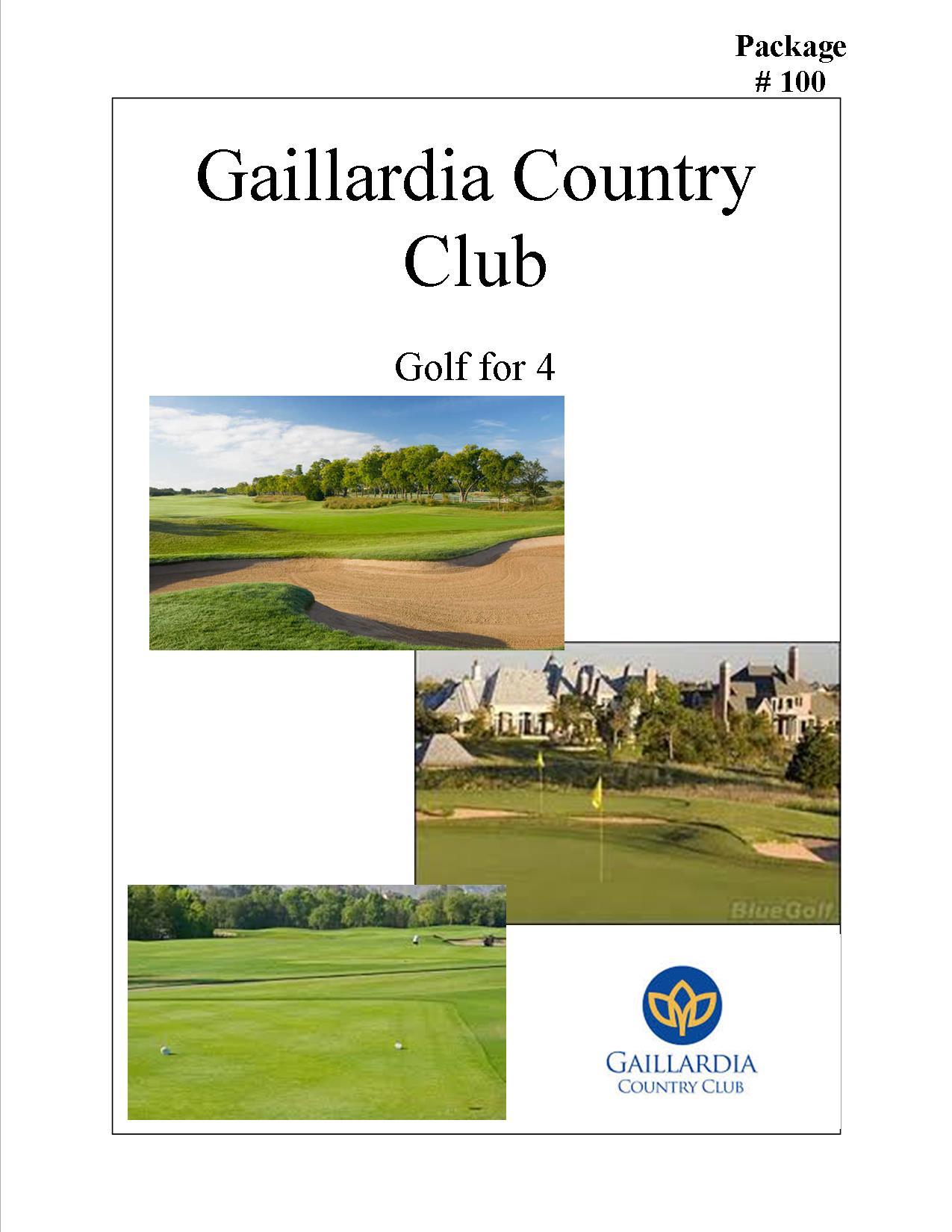 #100 Gaillardia.jpg