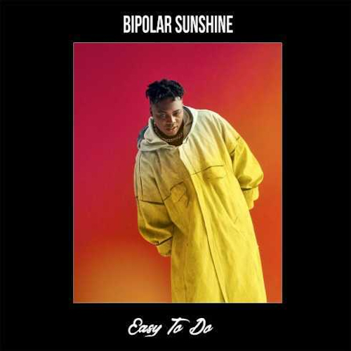 Bipolar Sunshin  Easy To Do    Mixing