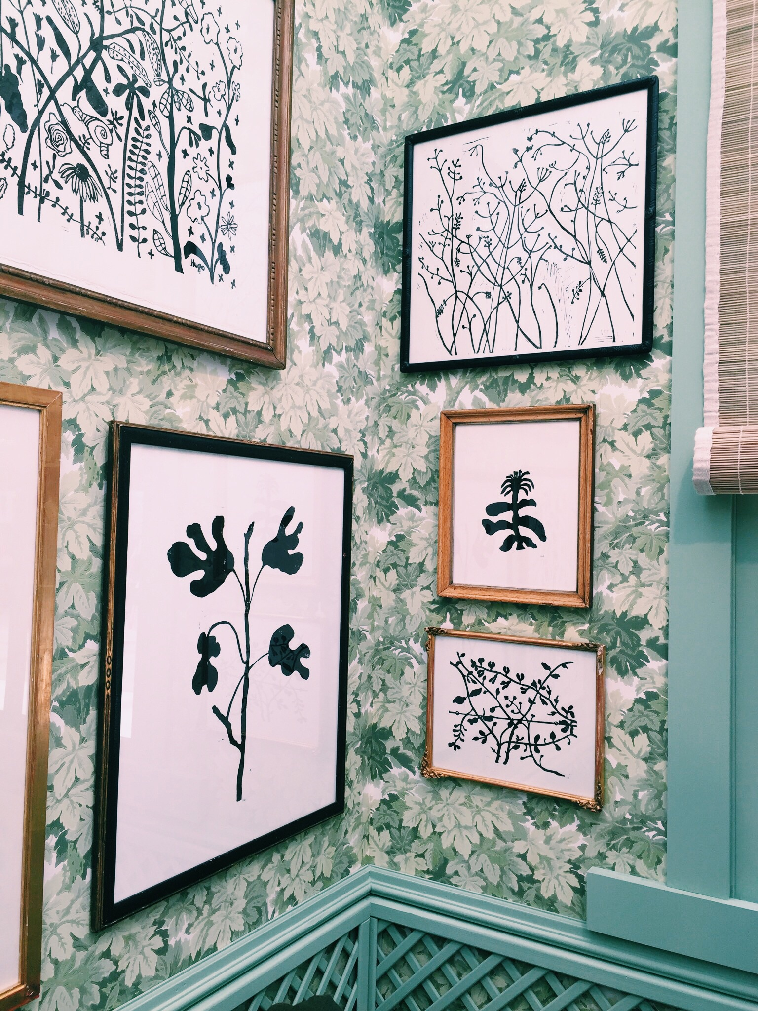 Black & white botanic prints in the Garden Dining Room by Joanna Plant