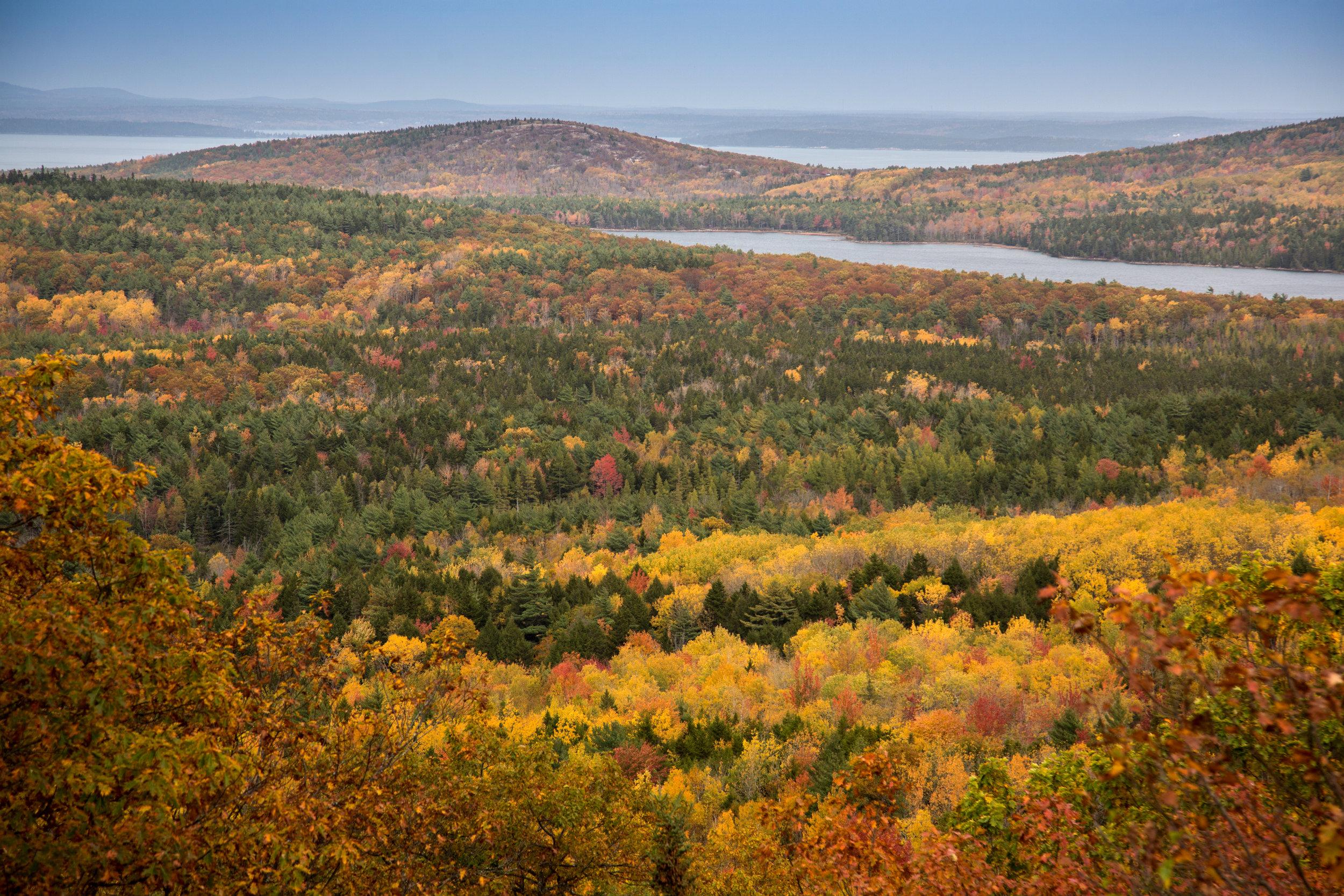 Acadia 2.jpg