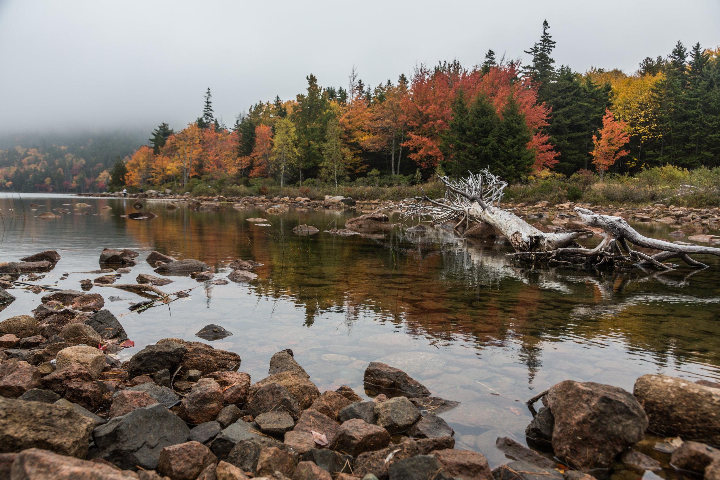 Acadia 6.jpg