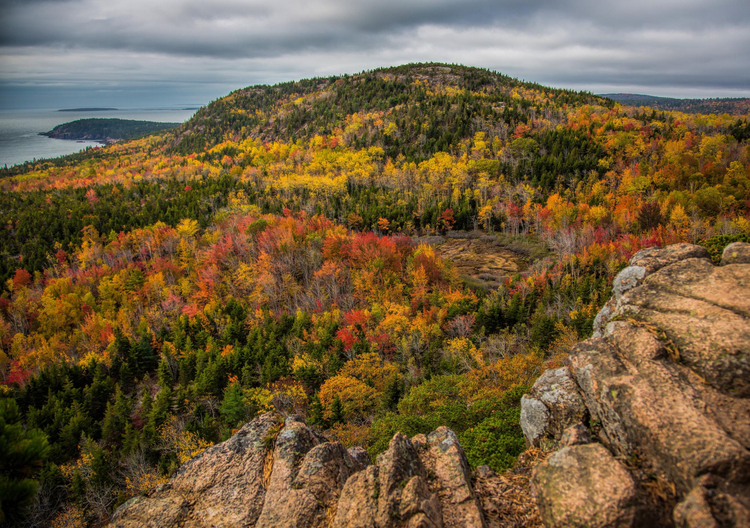 Acadia 10.jpg