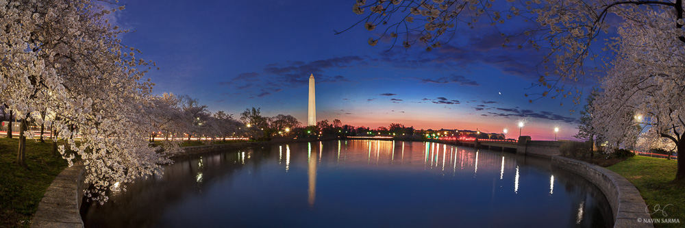navin-sarma-Blue-Cherry-Blossom-Man-and-Nature-Moon-Panorama-sunrise-Twilight-Washington-DC.jpg