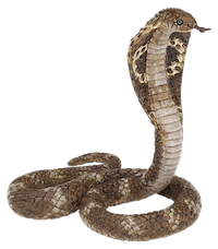 king cobra.png