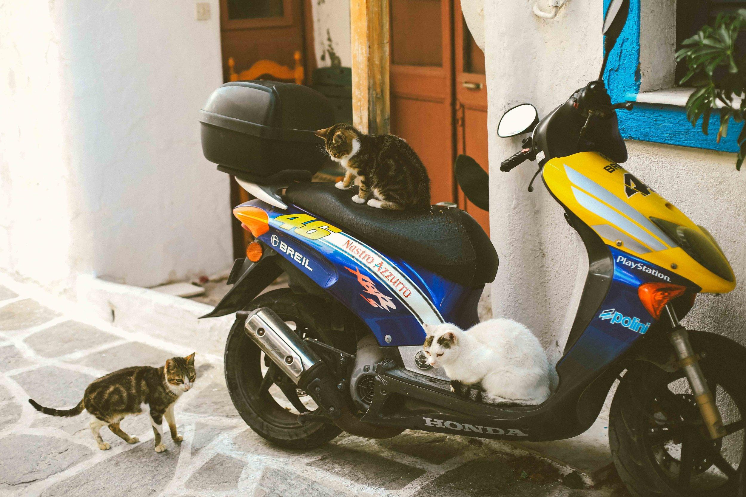 Greece_Photographer