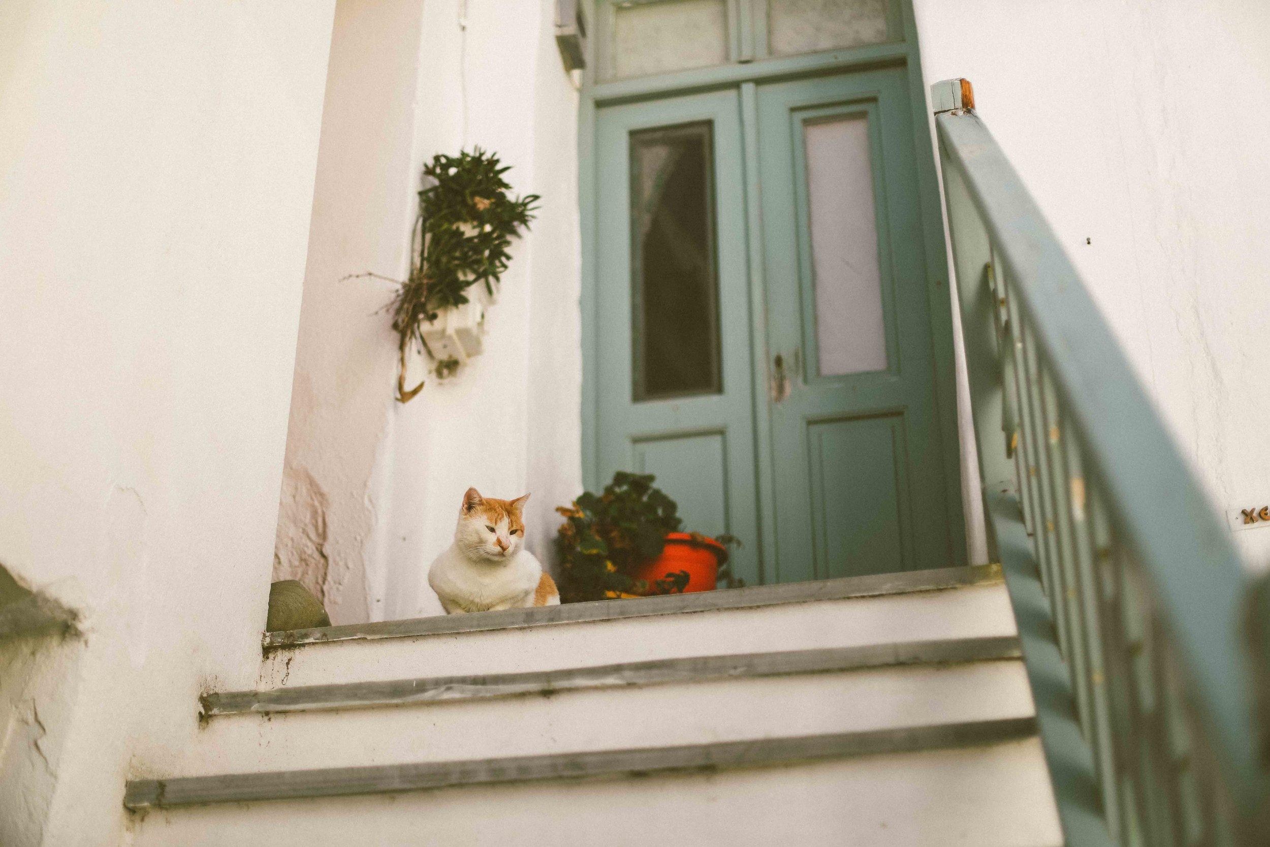 Paros_Greece_Street_Photography