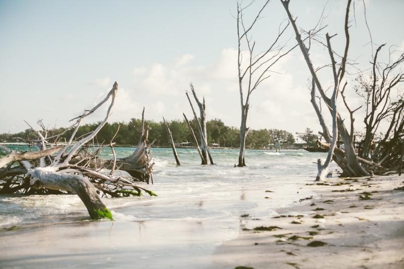beercan-island-photographer