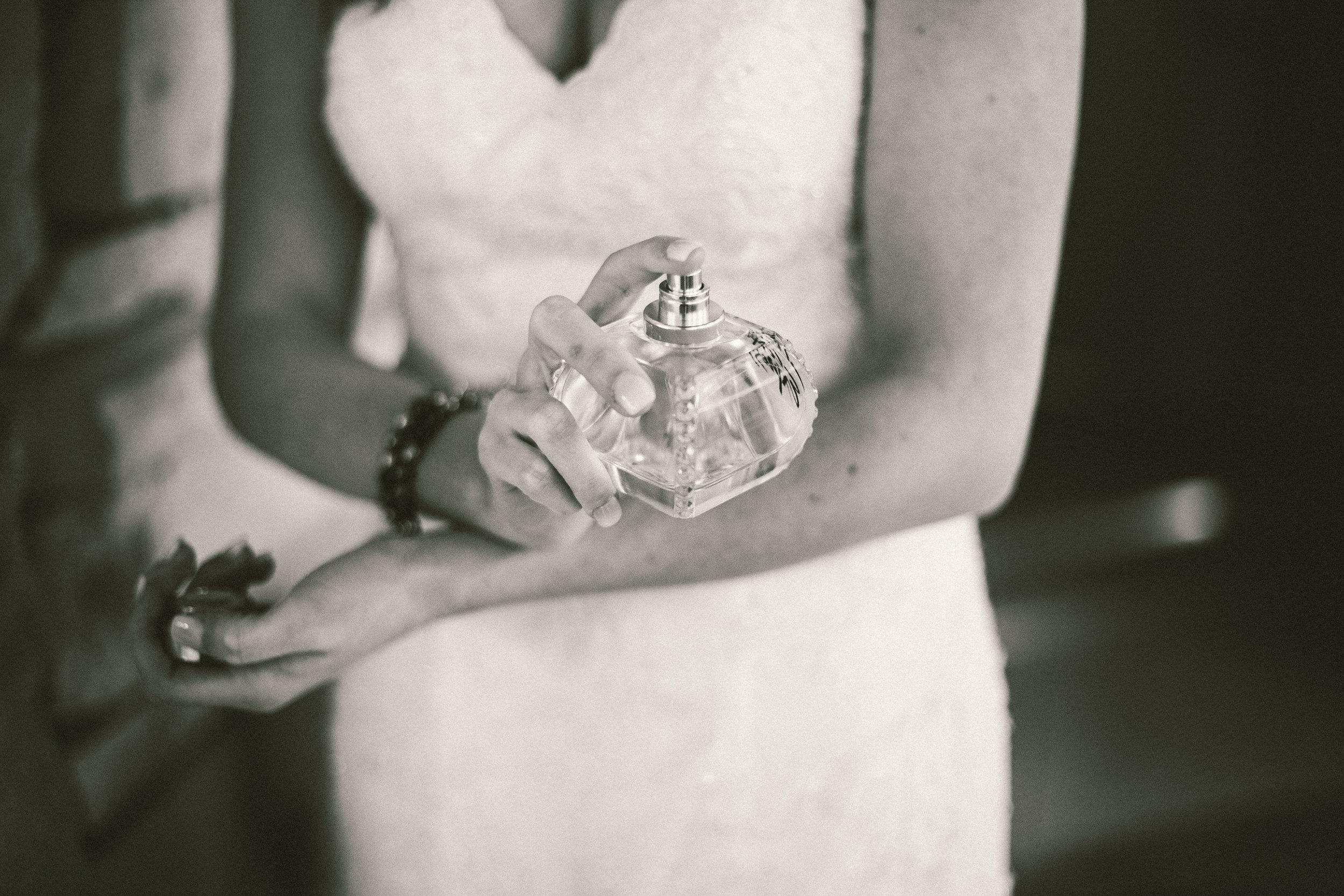 Pano Wedding-Emily Eli Pano 1 31 15-0168 (1).jpg