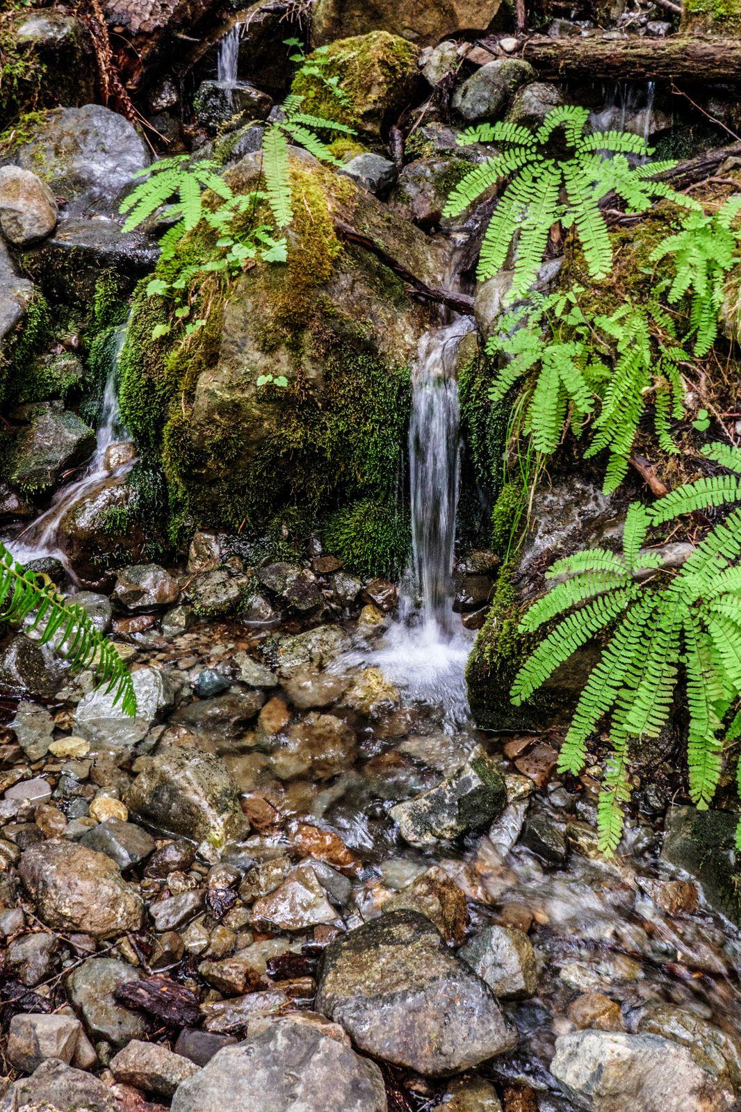 A little waterfall along the way