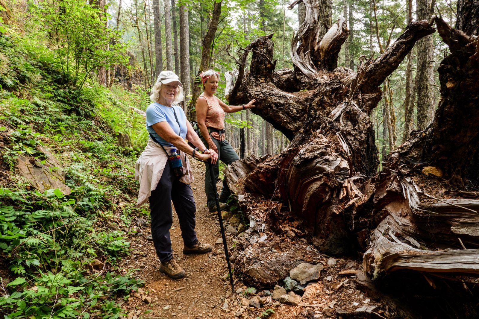 June and Shirley admire Mother Nature's garden art