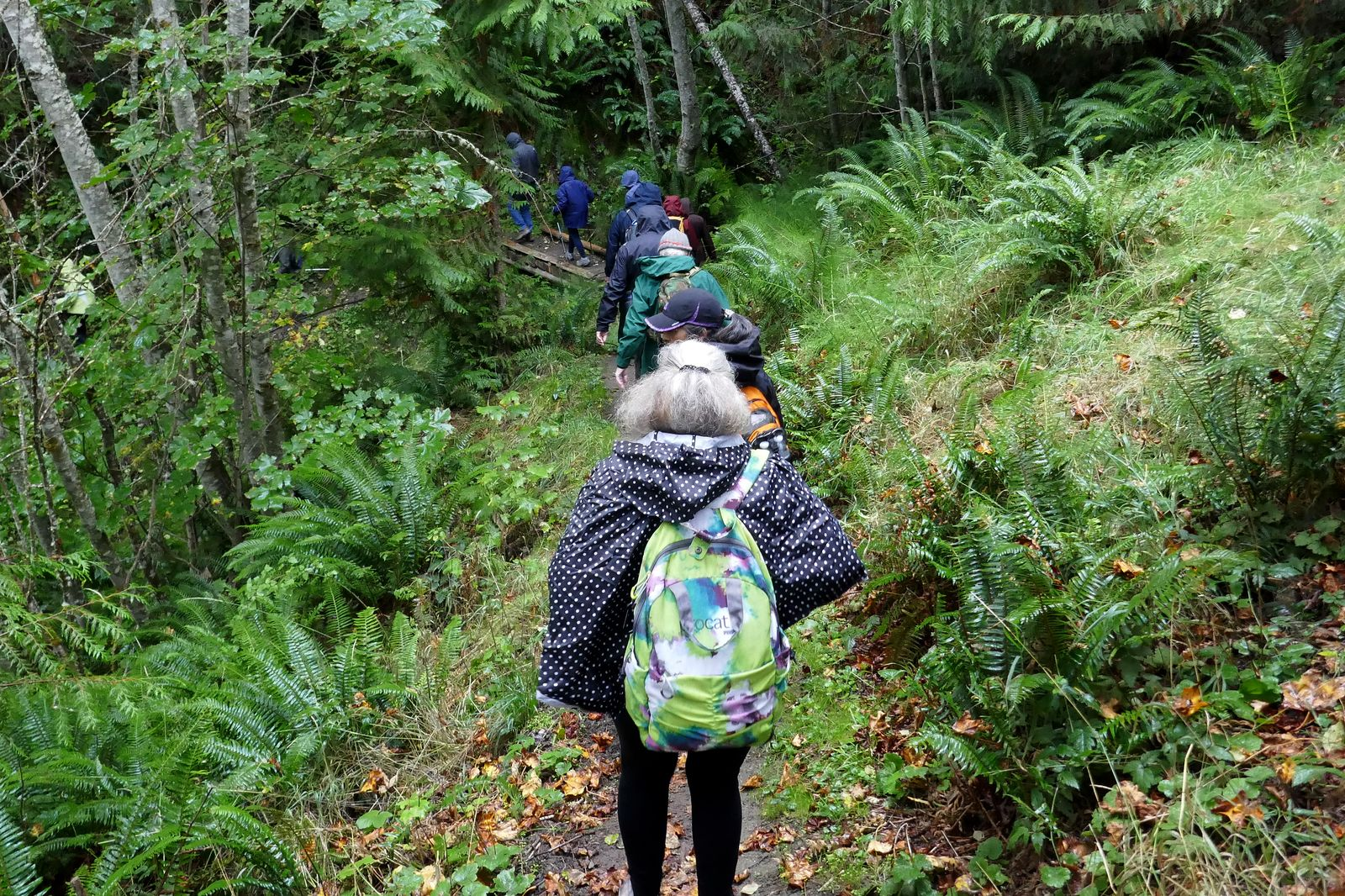 The hike begins