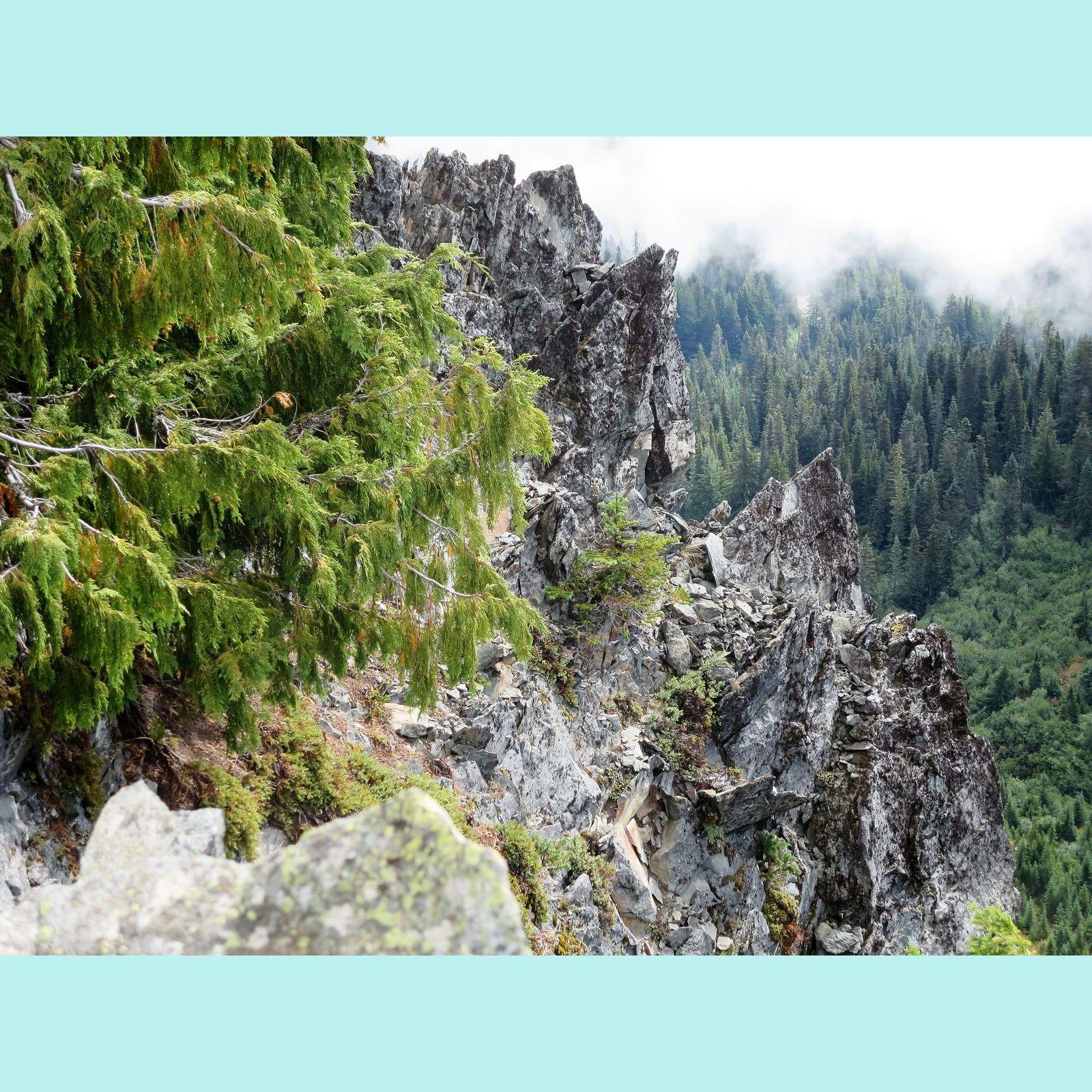 Reflection Lakes trail