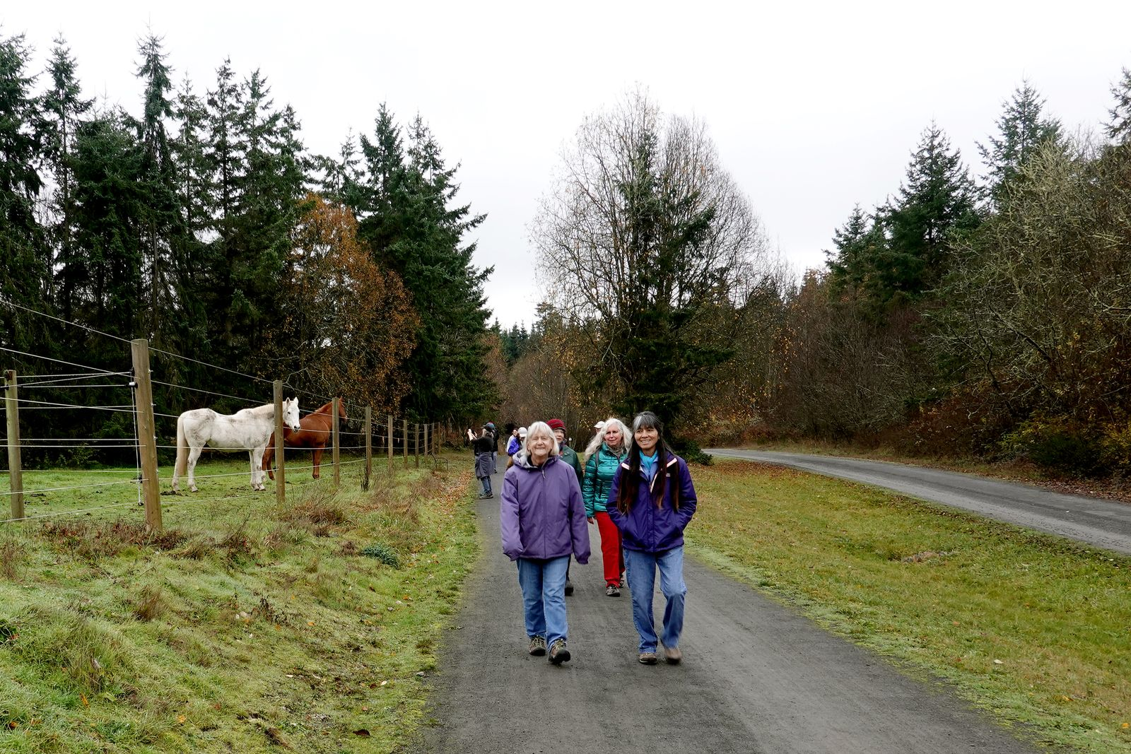 Doreen's type of hike-- she loves horses