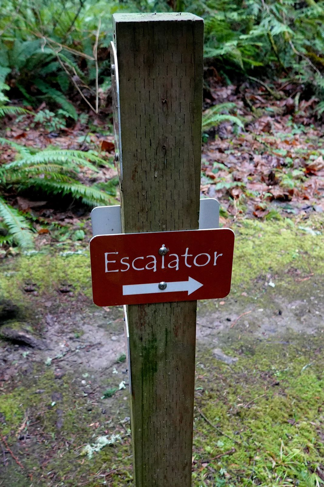 The small hills were not a problem – they have escalators