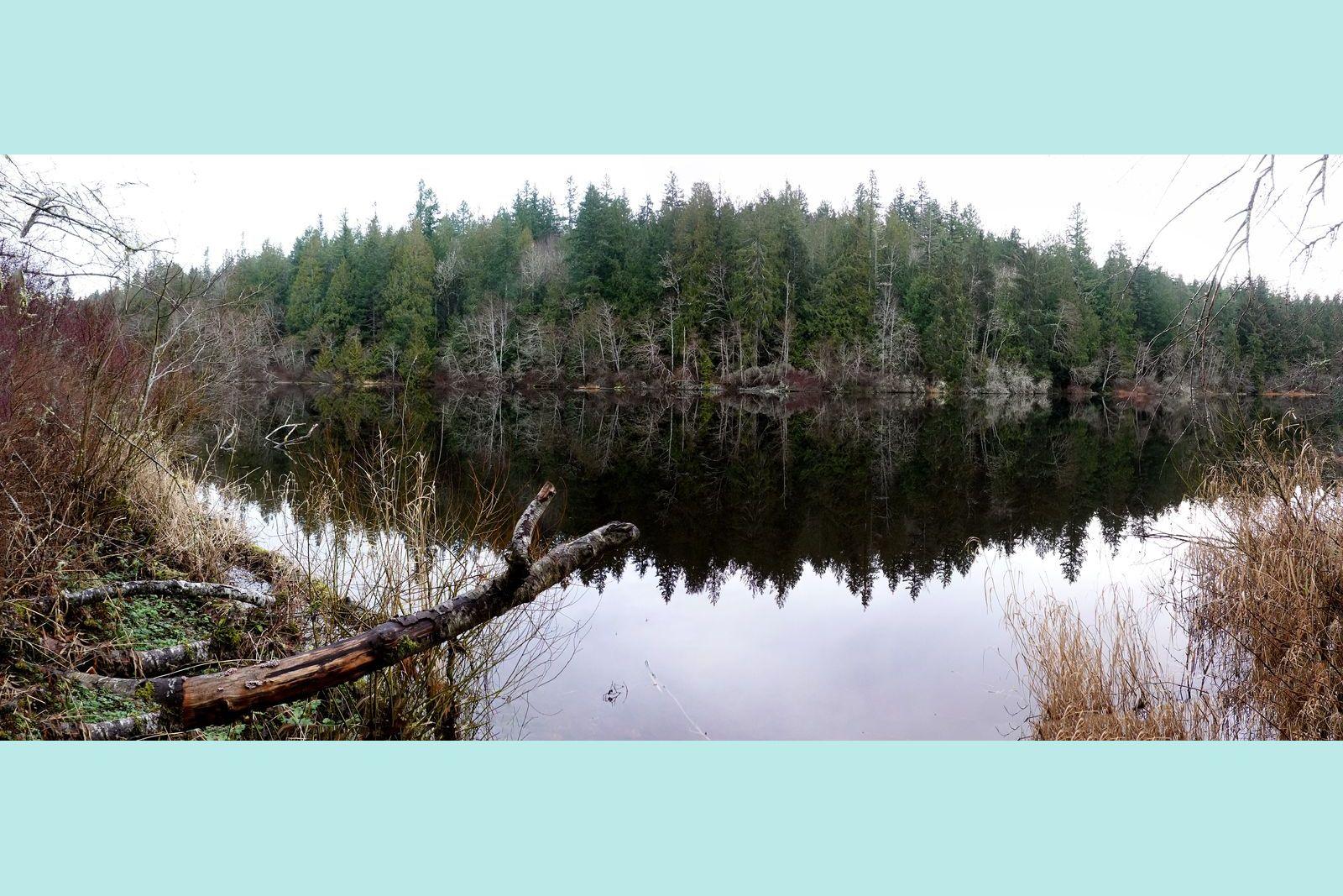 Reflection-- Gibbs Lake