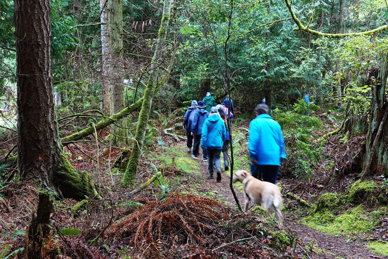 Up the Rainier Trail we go