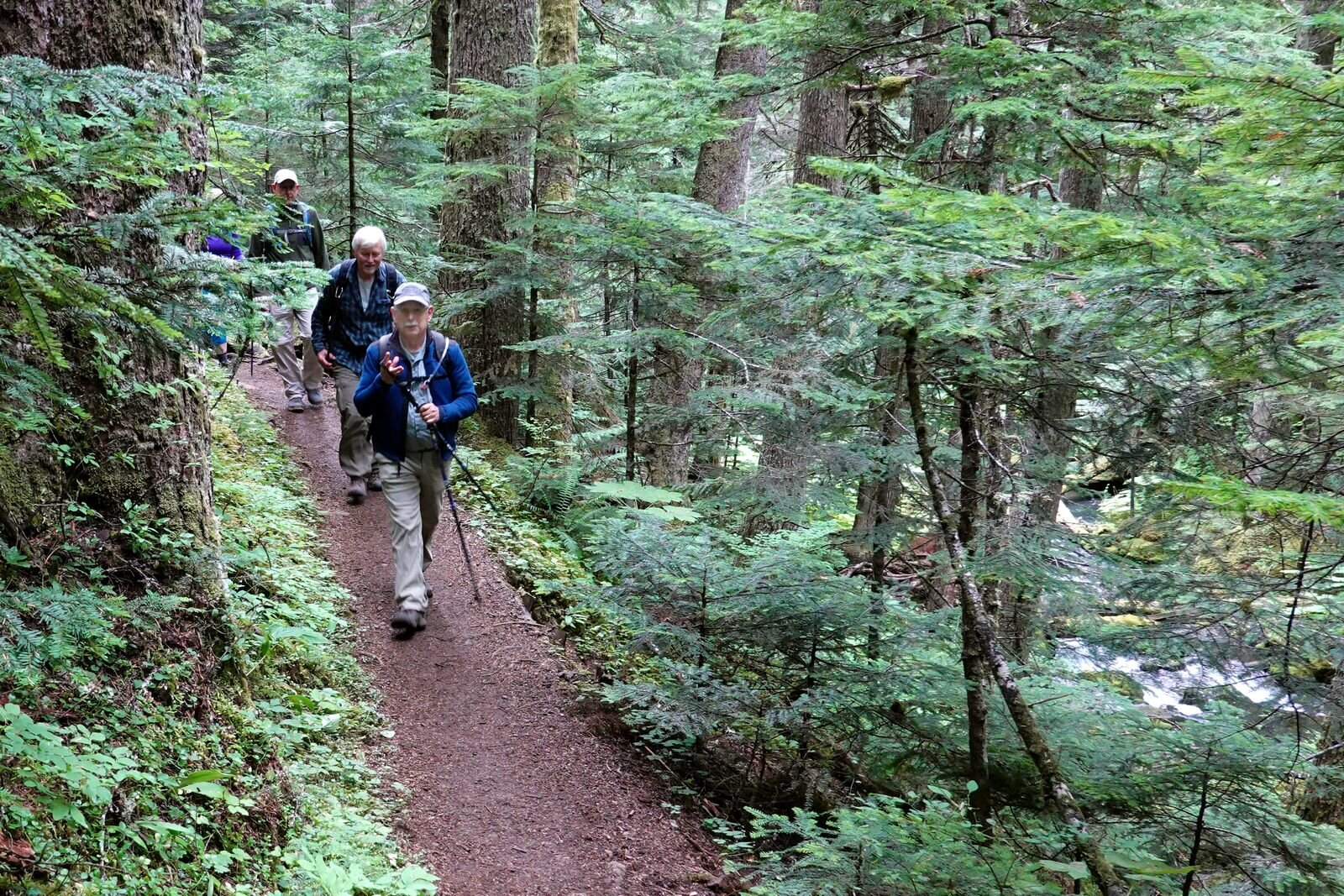 David our hike leader in the lead – Note Quilcene River on the right