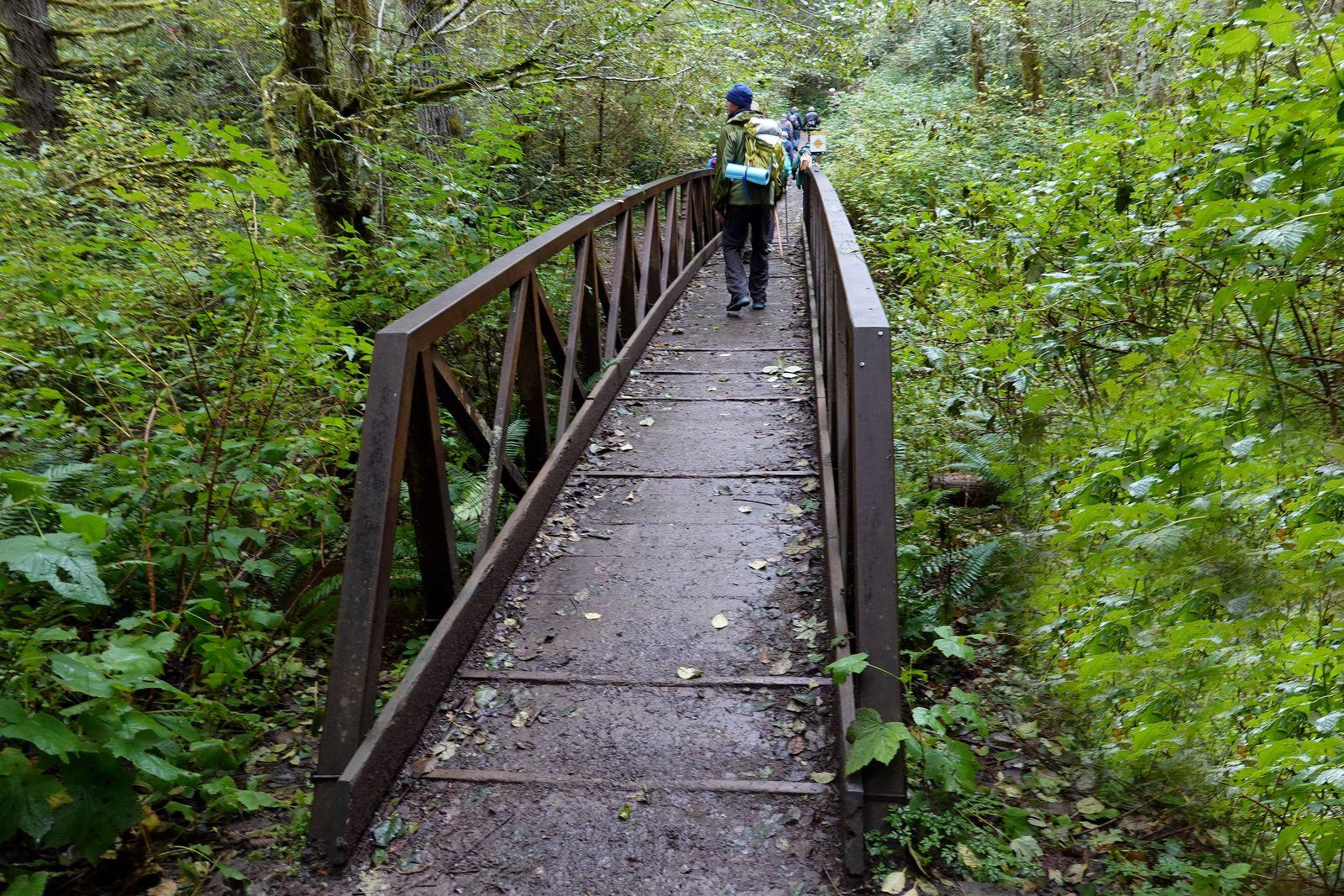Bridge across Gold Creek