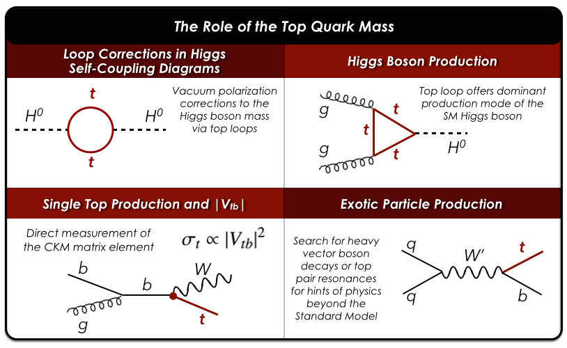 A few examples highlighting just some of the ways that the top quark manifests itself in the Standard Model (SM) and non-SM production and decay diagrams.