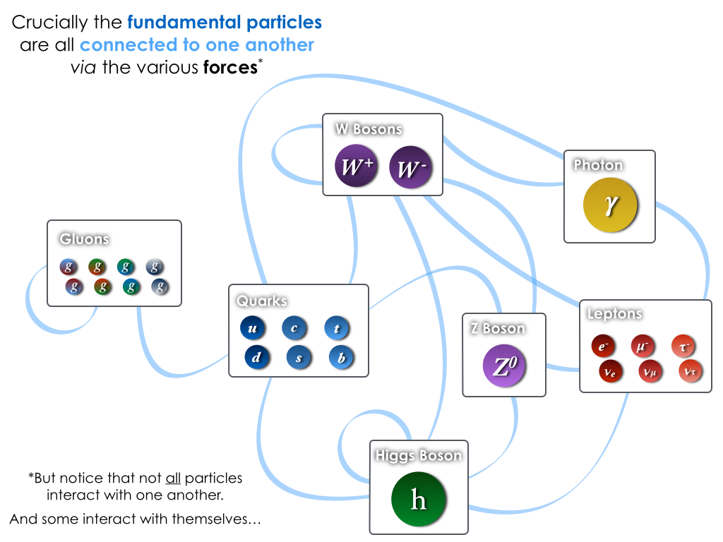 Interactions between the fundamental particles of the Standard Model.