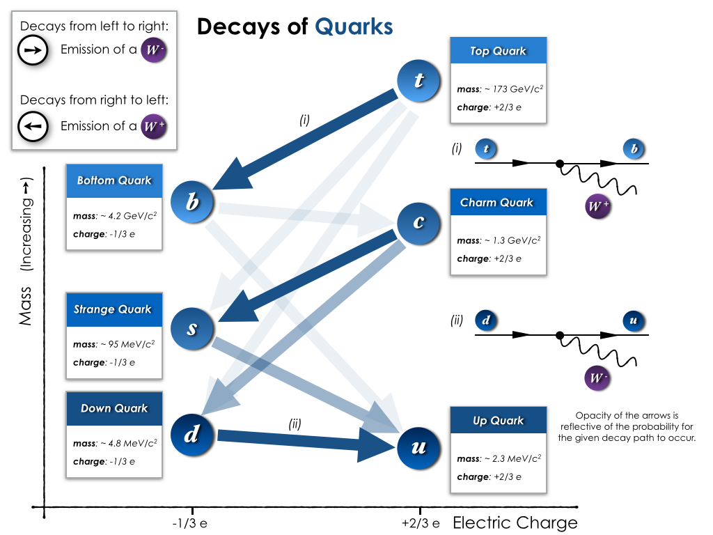 Decay paths for quarks, from the heaviest (top quark) all the way down to the lightest (up quark).