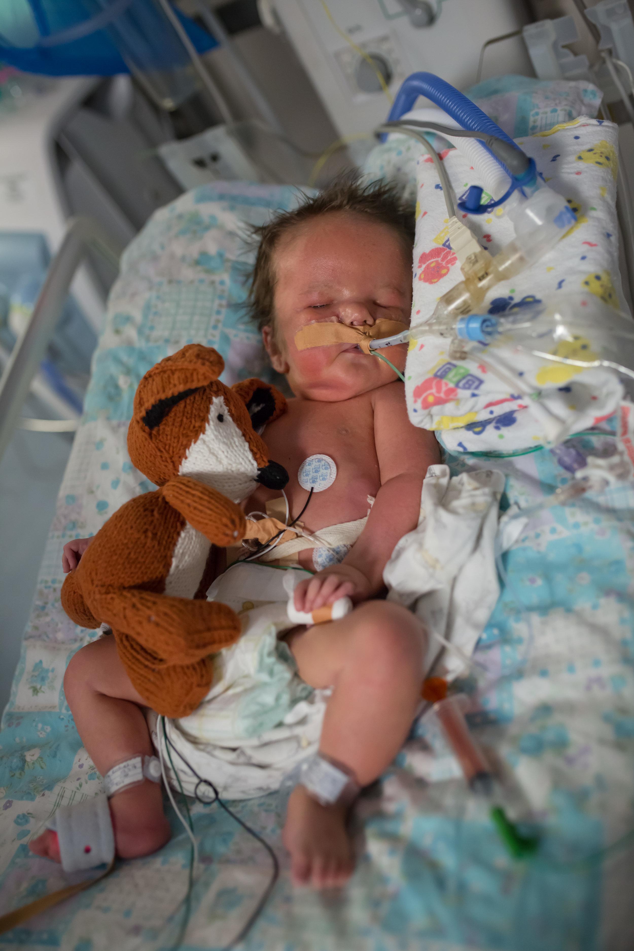 Brisbane maternity surrogate
