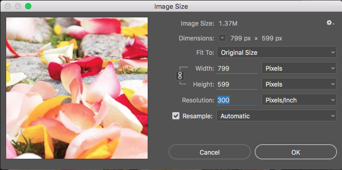 How to find the Image Resolution in Photoshop