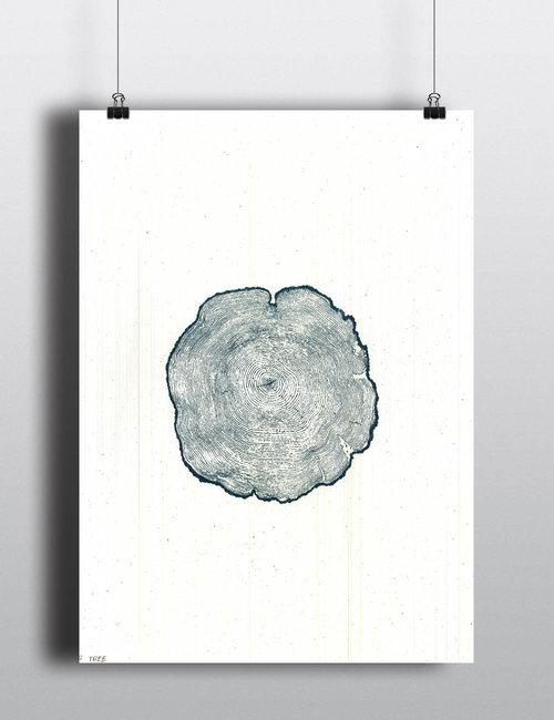 Blue+Cedar.jpg