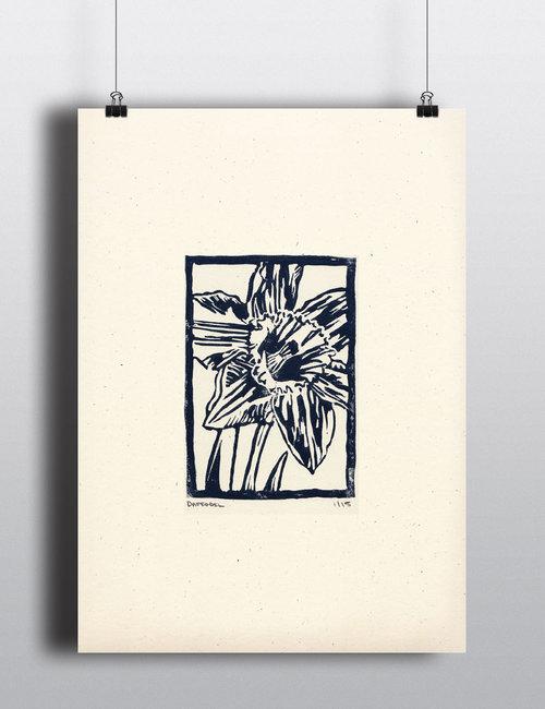 Daffodil+Blue.jpg