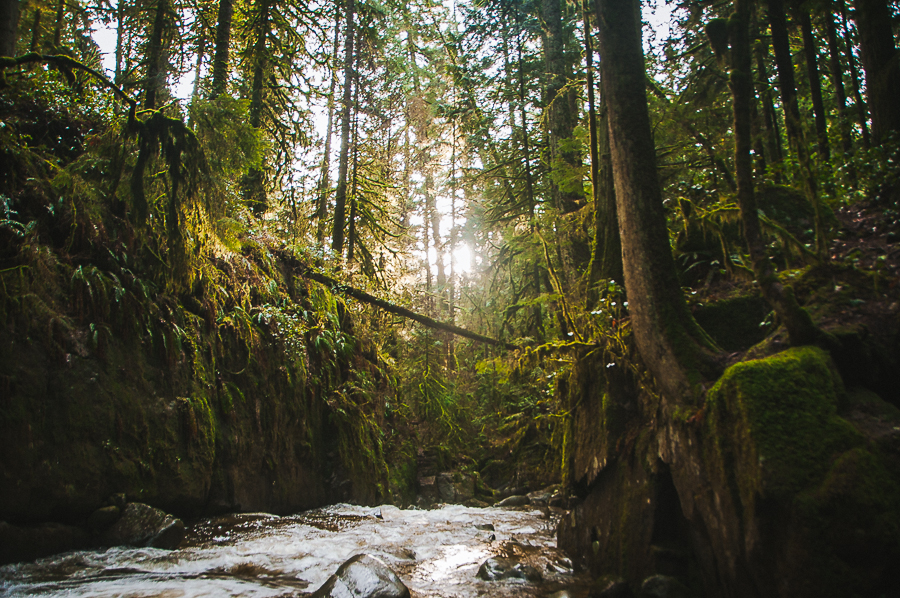Cypress Falls 8.jpg
