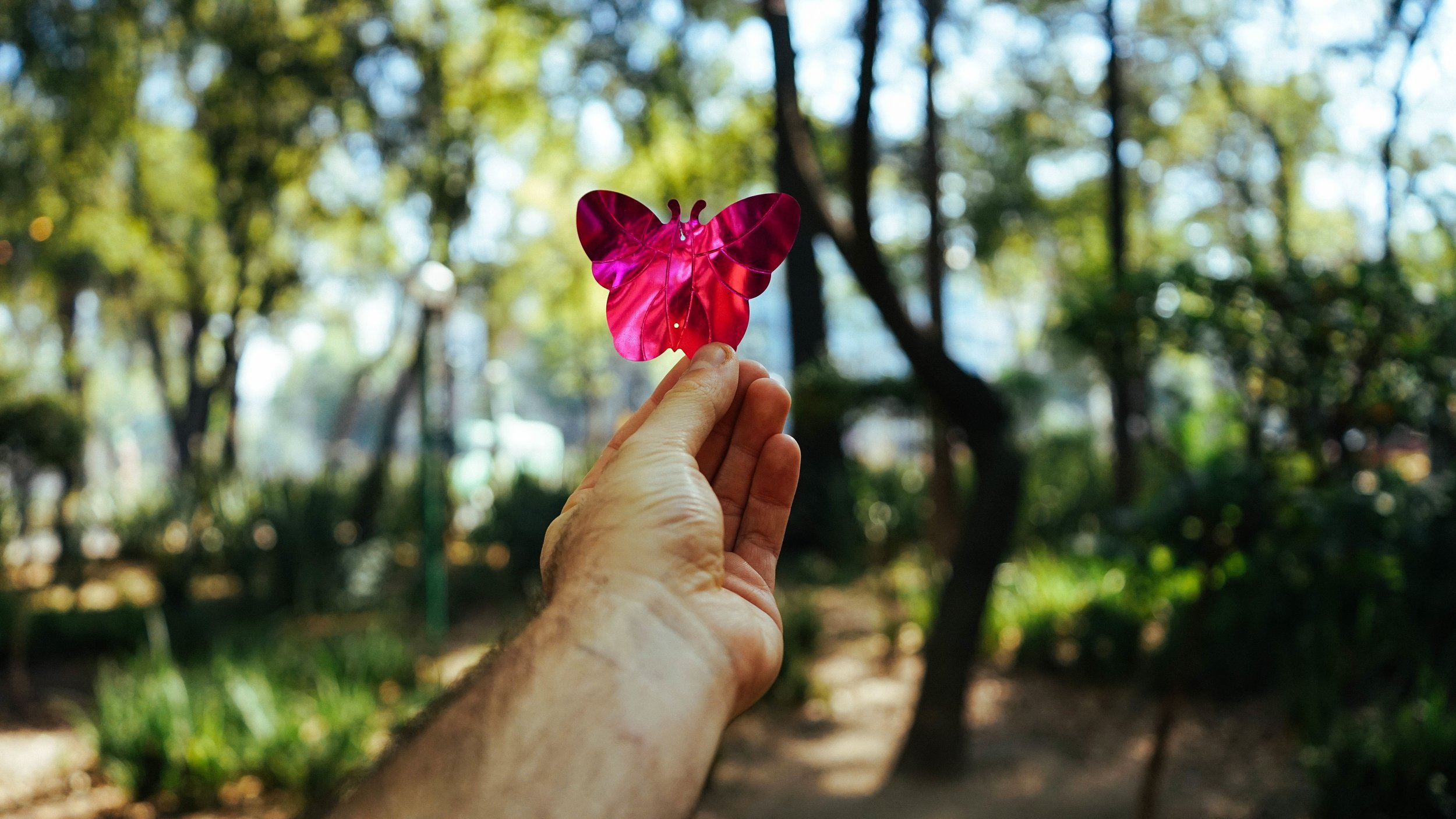 Pink butterfly on hand, counseling in columbia mo