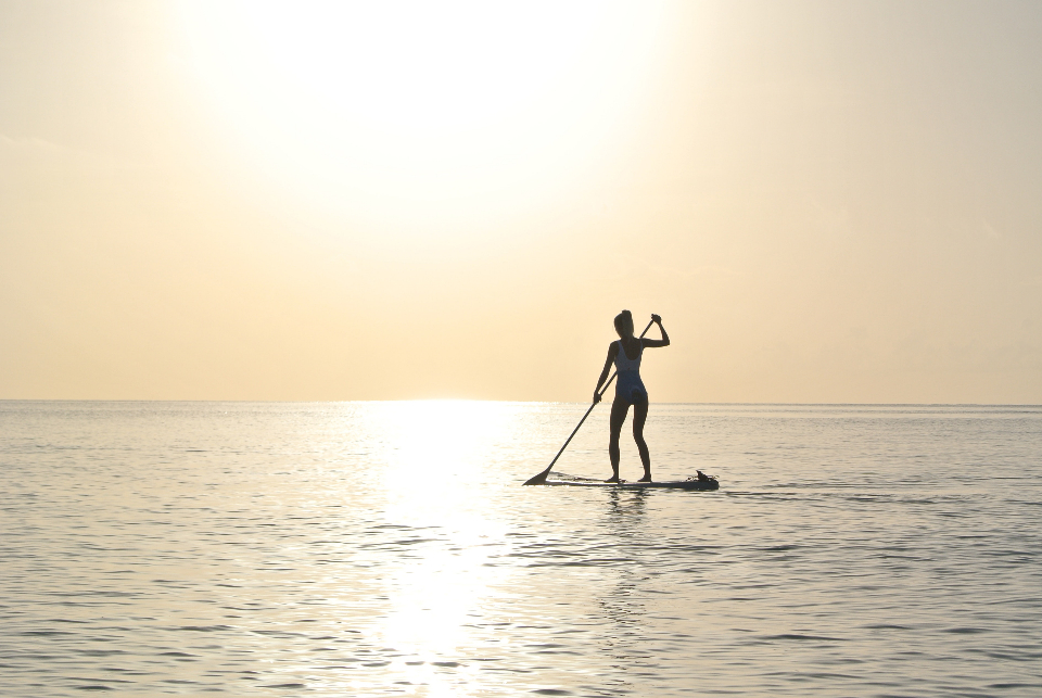 person on paddle board, water, sunrise