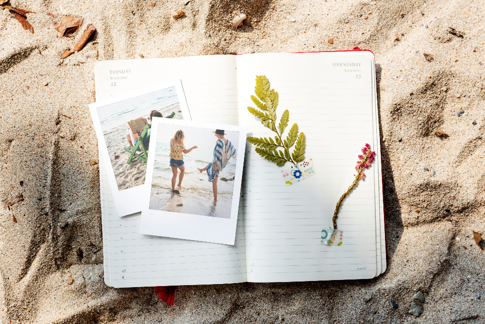 book with leaves, polaroid pictures, book in sand