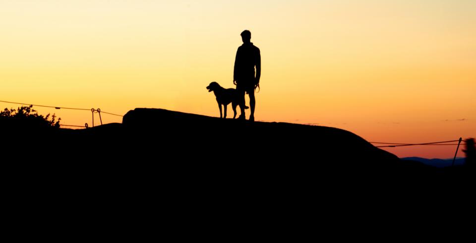sunset, man with dog, walking dog, man's best friend